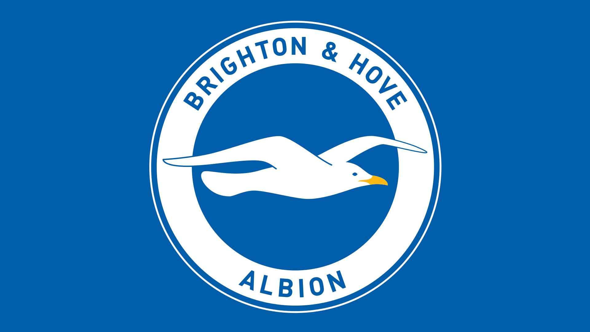 Meaning Brighton & Hove Albion logo and symbol.