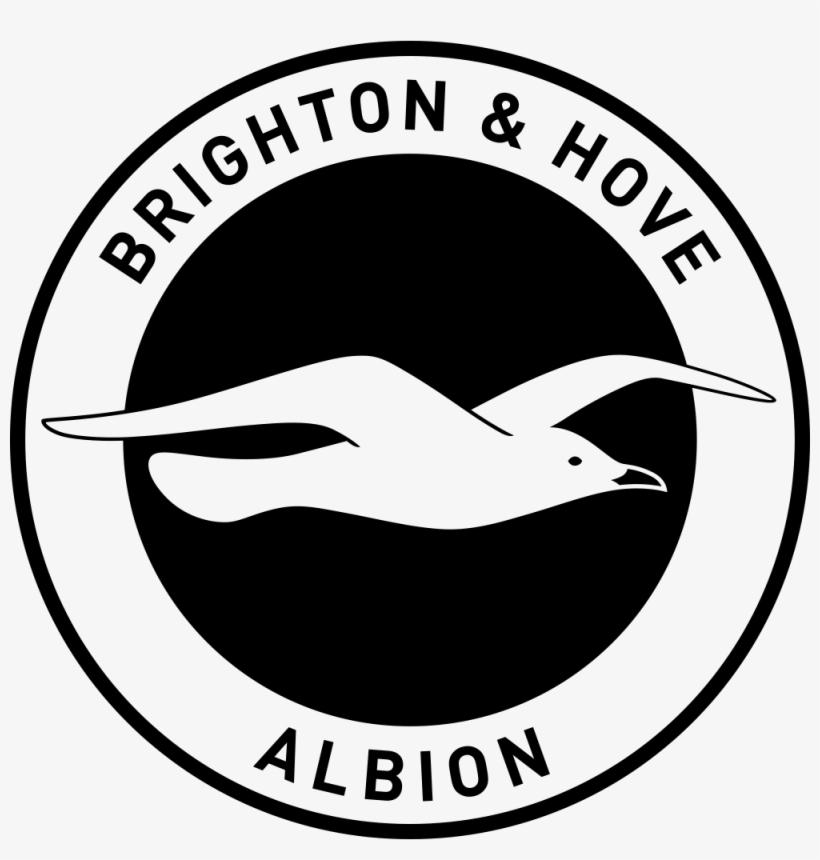 Brighton Albion & Hove Albion Fc Logo Png.