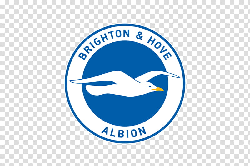 Premier League Logo, Brighton, Organization, Brighton Hove.