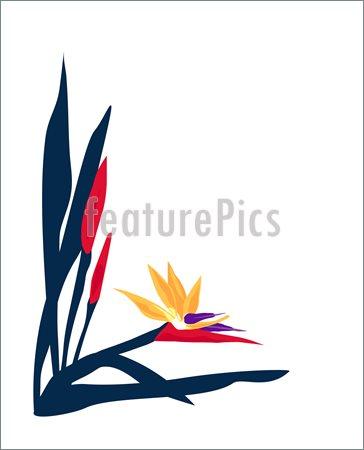 Clip Art Plant Layout Clipart.