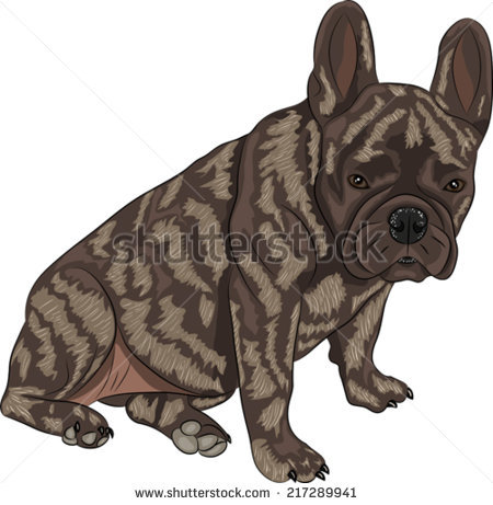 Brindle Dogs Stock Photos, Royalty.