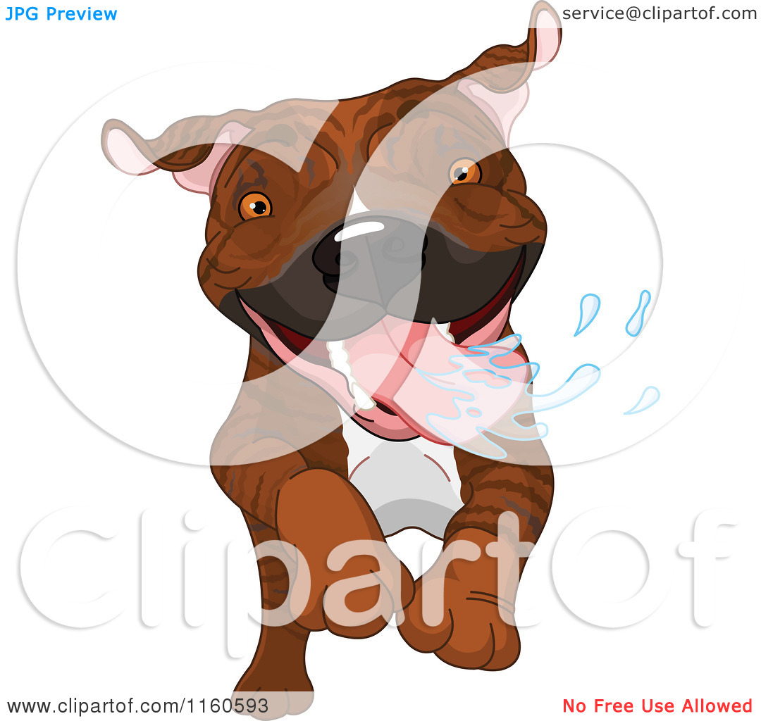 Cartoon of an Excited Brindle Pit Bull Dog Running and Drooling.