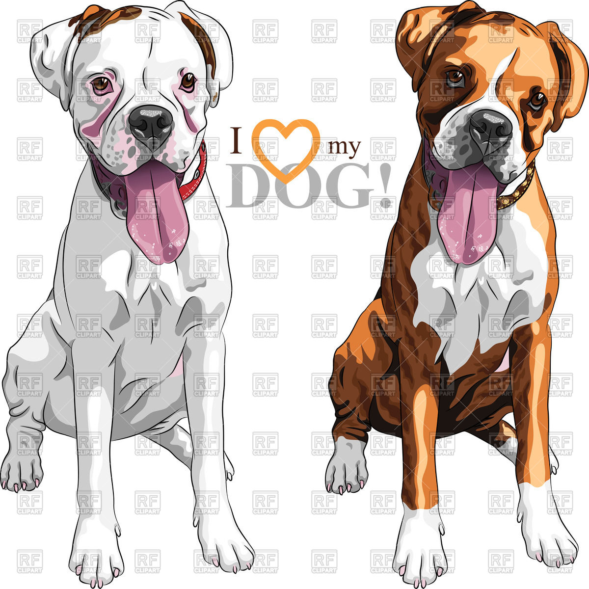 Pair of white and brindle dogs.