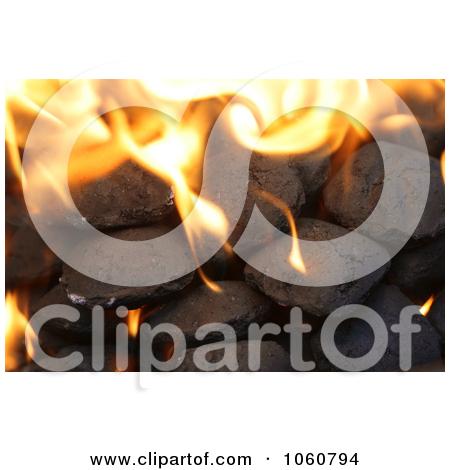Charcoal Briquette Photos #1.