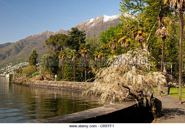 Ticino Region Stock Photos & Ticino Region Stock Images.