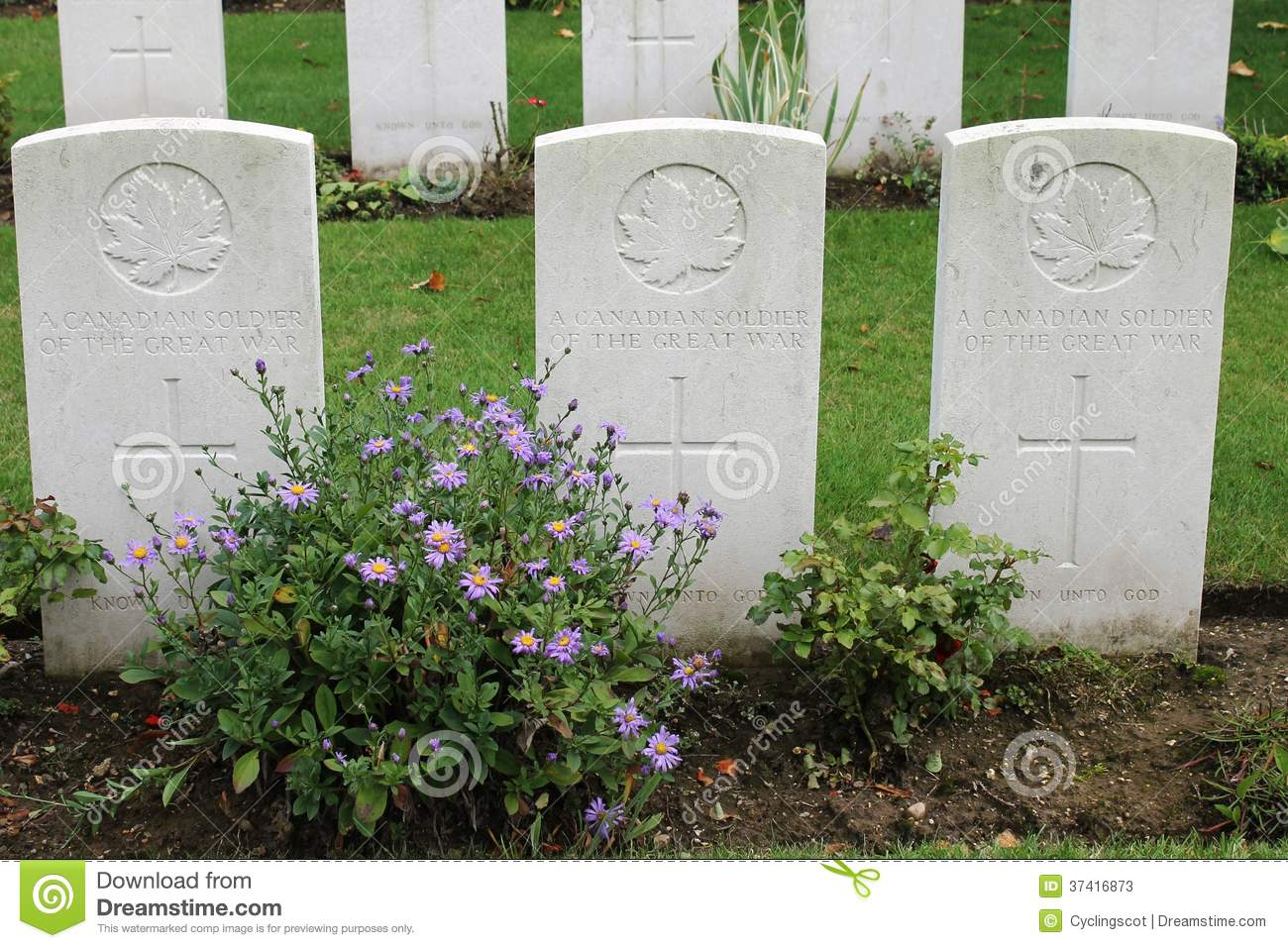 Graves Of Three Unknown WW1 Canadian Soldiers Stock Photos.