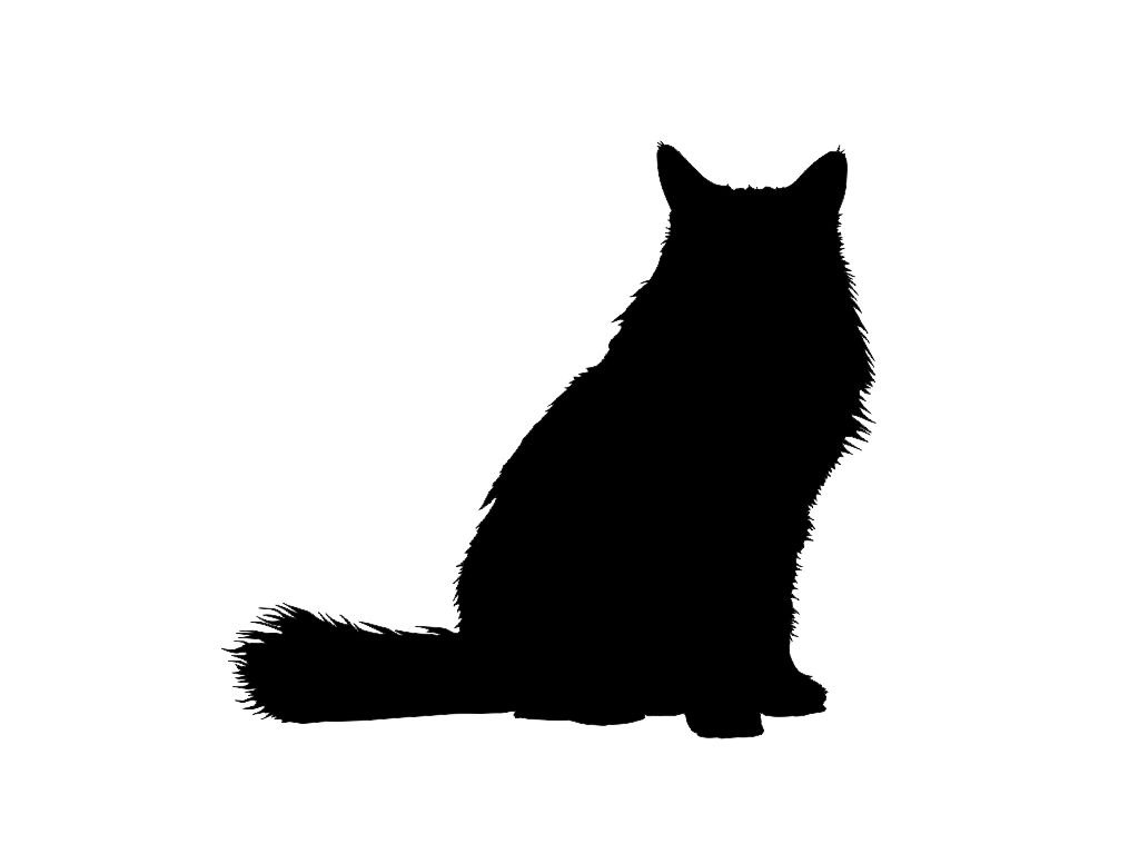 Silhouette of short haired cat clipart.