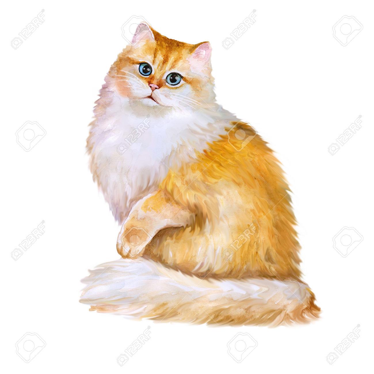 Watercolor Portrait Of British Golden Chinchilla Long Hair Cat.