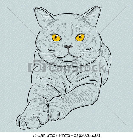 Vector Clipart of Vector British shorthair blue cat lies and looks.