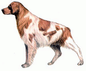 Dogs Clip Art Download.