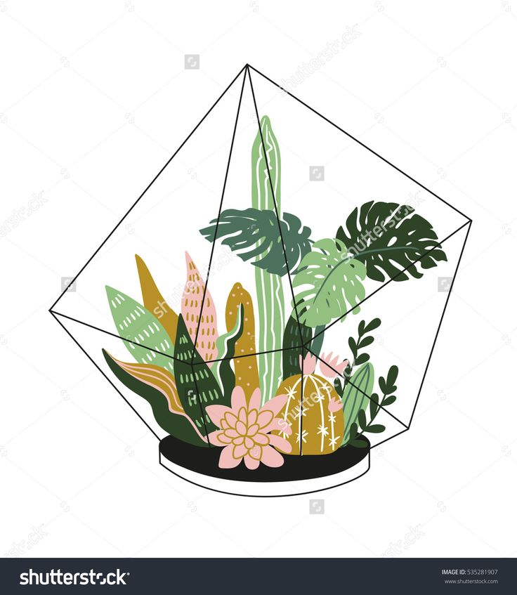 1000+ ideas about Tropical House Plants on Pinterest.