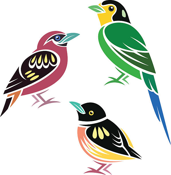 Banded Broadbill Clip Art, Vector Images & Illustrations.