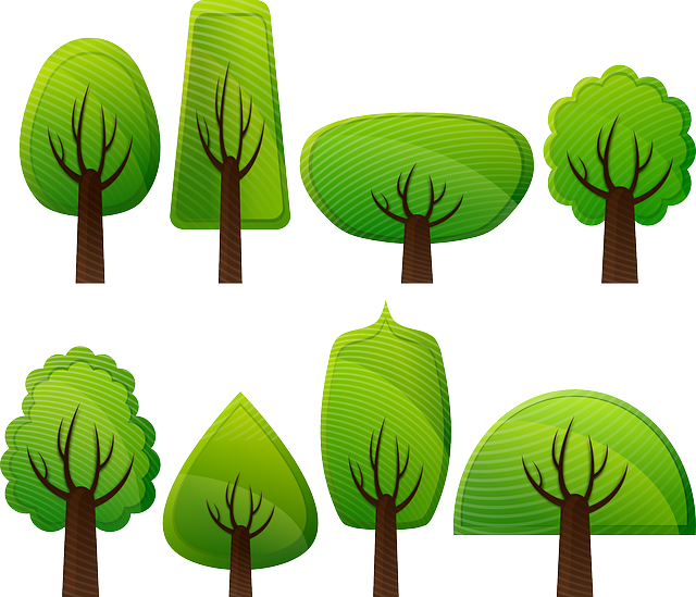 Free photo Nature Environment Greens Leaf Trees Grass Forest.