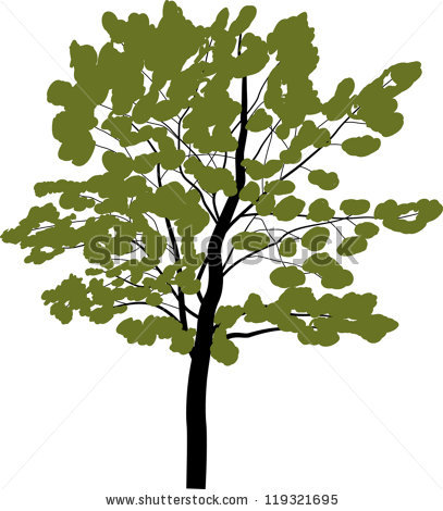 "Potapov Alexander's ""vector trees"" set on Shutterstock."