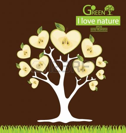 106 Broad Leaved Tree Stock Vector Illustration And Royalty Free.