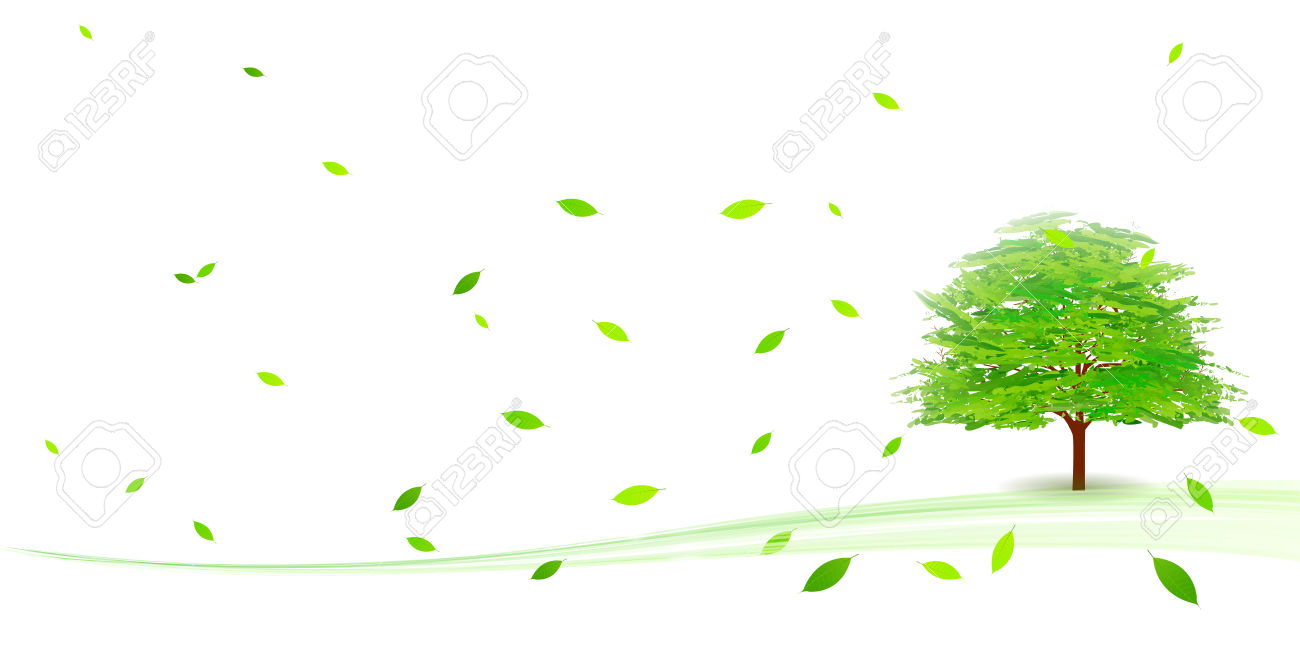 122 Broad Leaved Cliparts, Stock Vector And Royalty Free Broad.