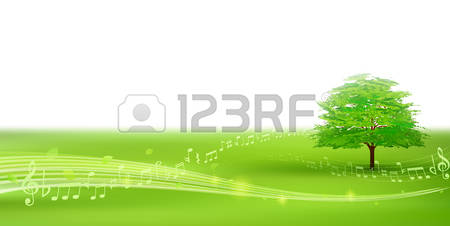Broad Leaved Trees Stock Photos Images. 519 Royalty Free Broad.
