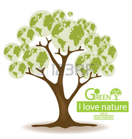 119 Broad Leaved Trees Stock Vector Illustration And Royalty Free.