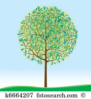 Broad leaved tree Clipart EPS Images. 29 broad leaved tree clip.