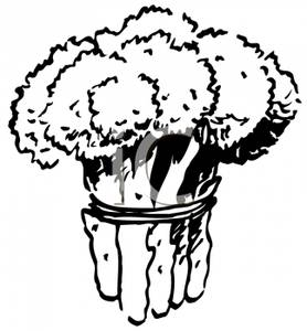 Broccoli Black And White Clipart#1909271.