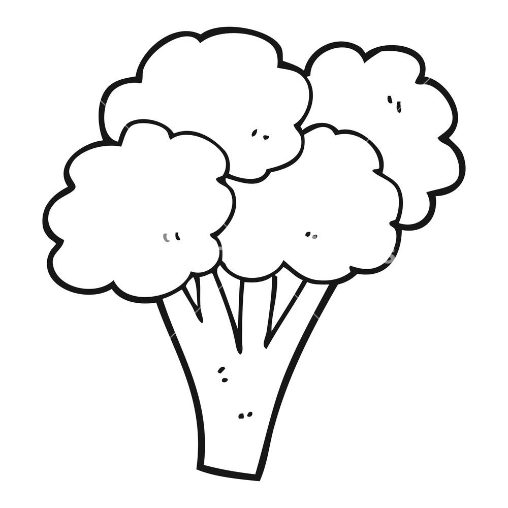 freehand drawn black and white cartoon broccoli Royalty.