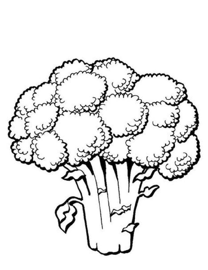 Broccoli Clipart Black And White.