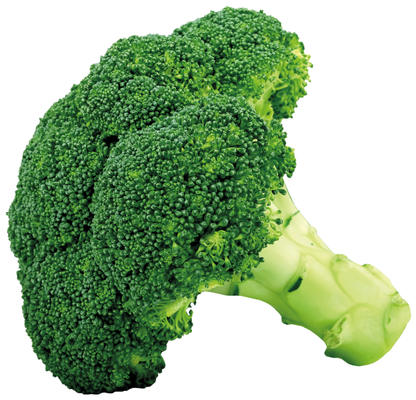 Sad clipart broccoli, Sad broccoli Transparent FREE for.