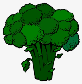 Free Broccoli Clip Art with No Background.