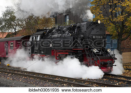 "Stock Image of ""Steam locomotive of the Harz Narrow Gauge Railways."