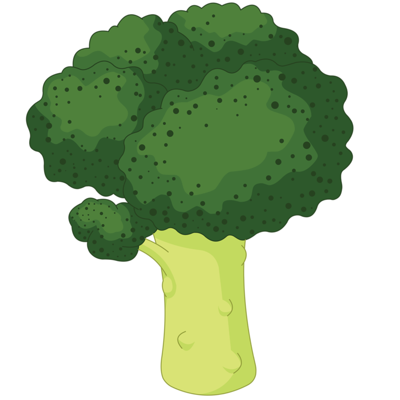 14 cliparts for free. Download Broccoli clipart cauliflower and use.