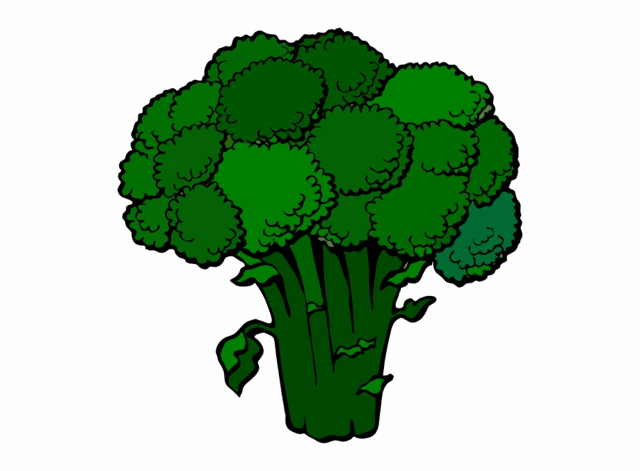 Broccoli Clipart, Transparent Png Download For Free #3020385.