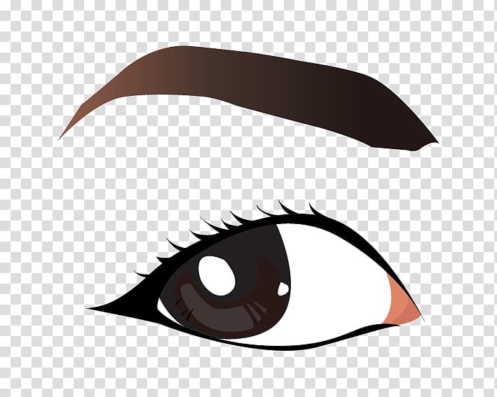 Eyebrow , eye brows transparent background PNG clipart.