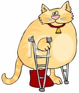 A Fat Cat Using Crutches To Walk Clip Art Image.