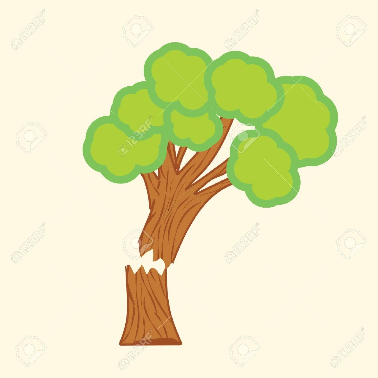 tree with broken trunk.