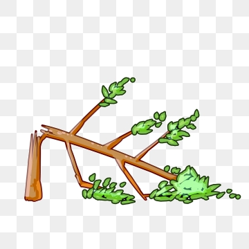 Broken Tree Png, Vector, PSD, and Clipart With Transparent.