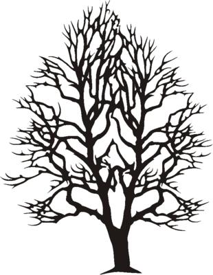 Broken Tree Branch Clip Art.