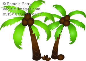 Clip Art Image of Palm Trees With a Broken Coconut on the Ground.