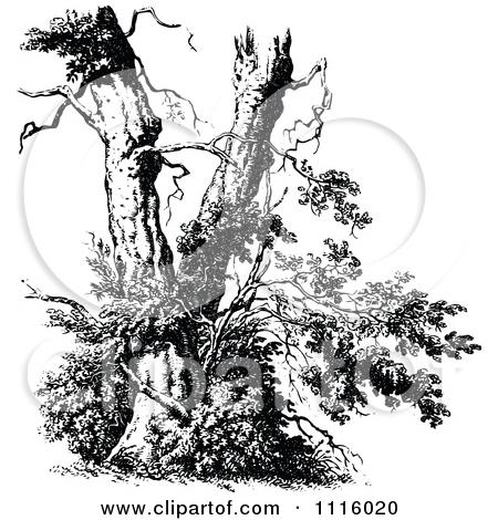 Clipart Retro Vintage Black And White Broken Tree.