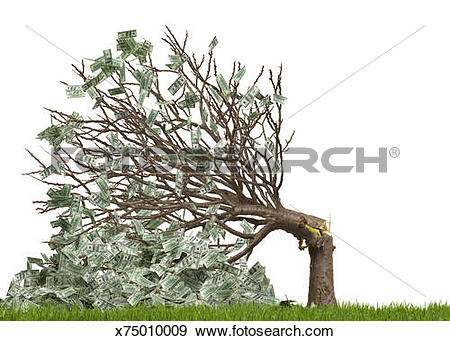 Stock Photograph of Money tree broken, white background x75010009.