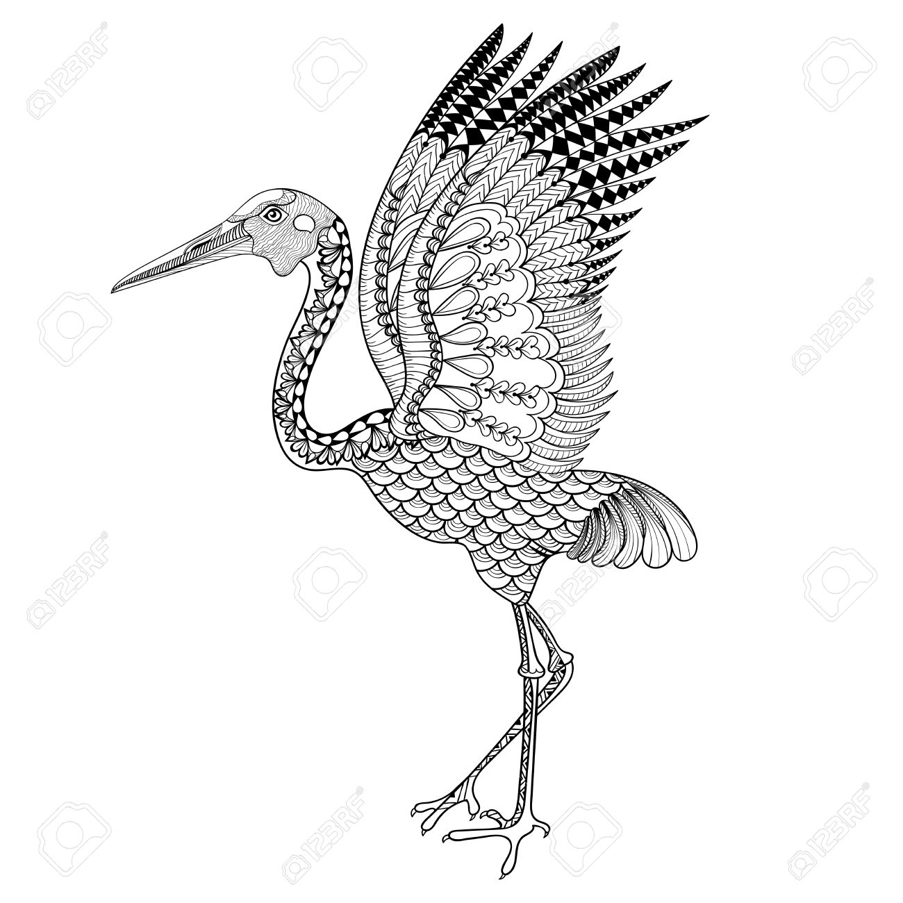 Hand Drawn Brolga, Australian Crane Illustration For Antistress.