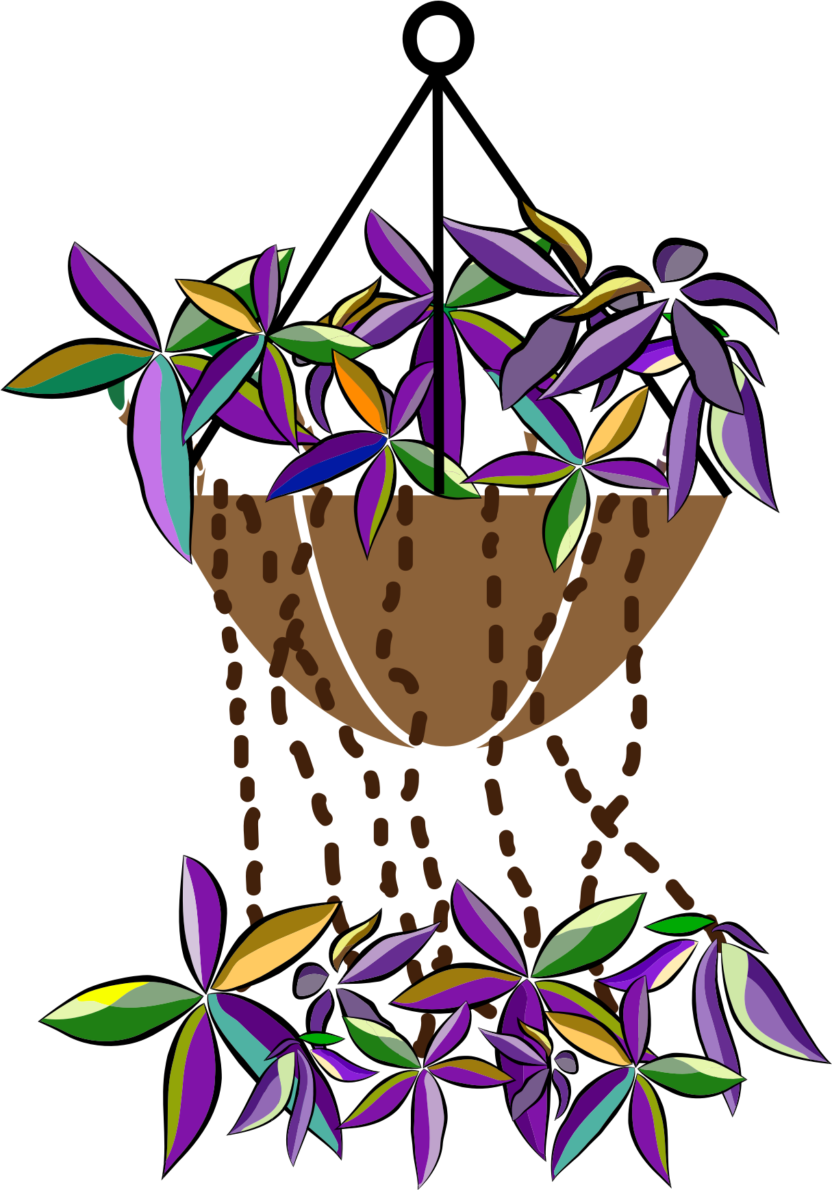 Bromeliads flowers vector clipart.
