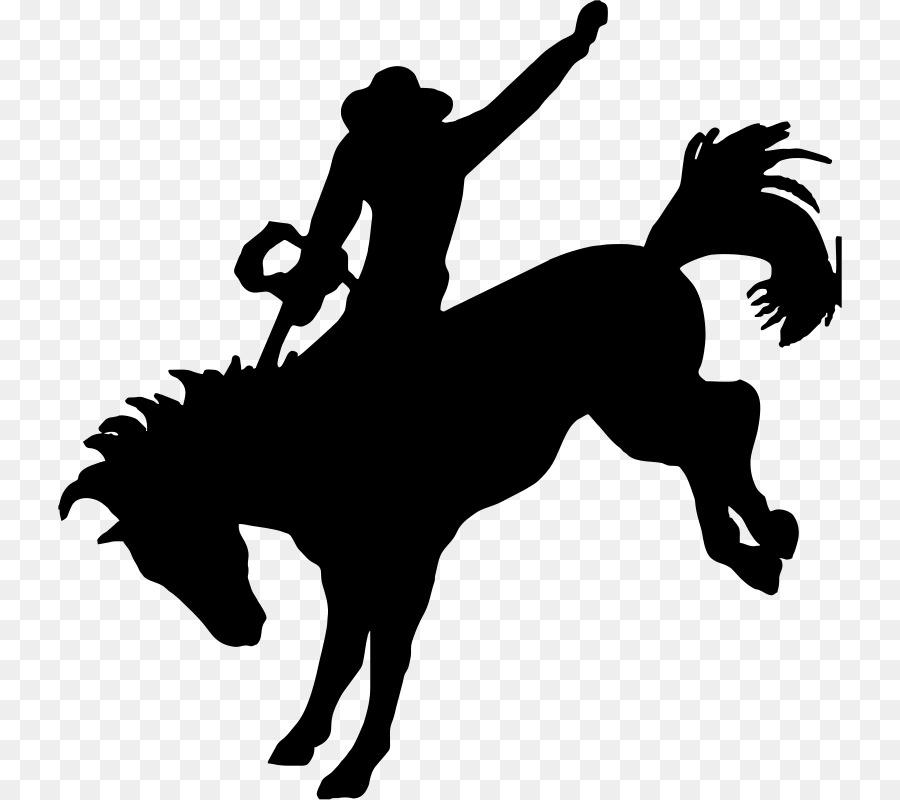 Horse Cartoon.