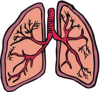 Bronchitis Clipart.