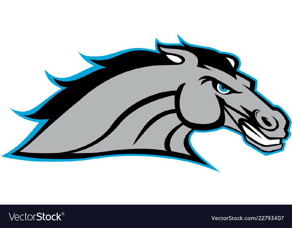 Bronco head sports logo mascot.