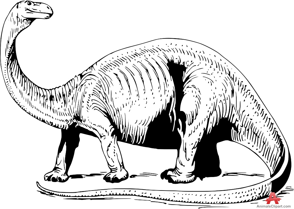 Brontosaurus Dinosaur Drawing Clipart.