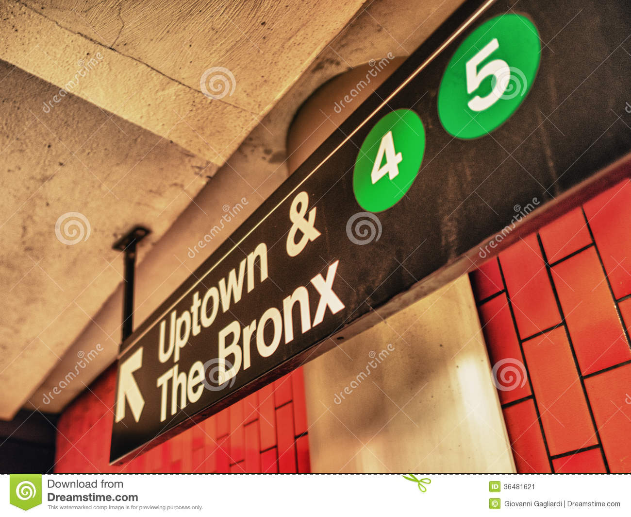 Bronx Stock Photos, Images, & Pictures.