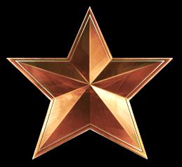 File:Bronze star.png.