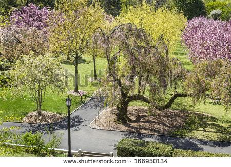 Brooklyn Botanic Gardens Stock Photos, Royalty.