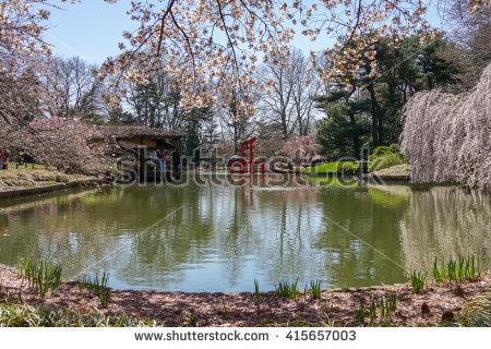 Botanical Garden Stock Photos, Royalty.