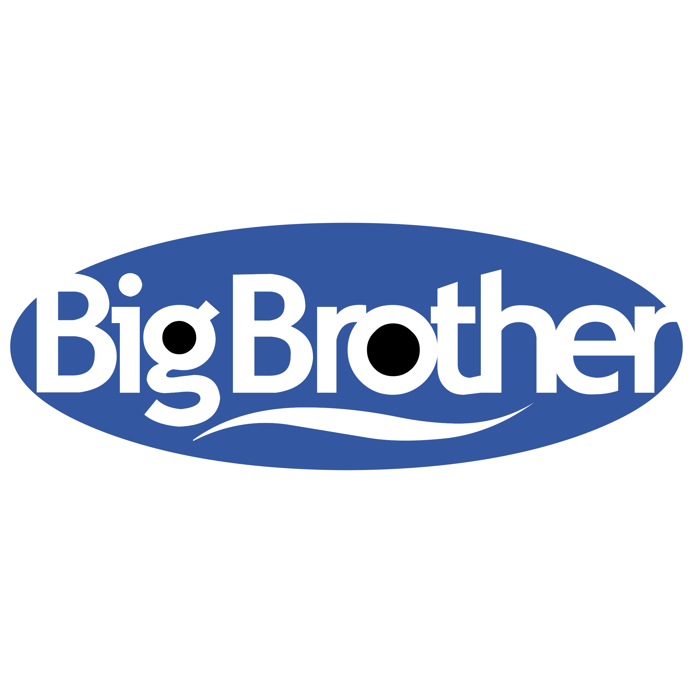 Big Brother Logo PNG Transparent & SVG Vector.